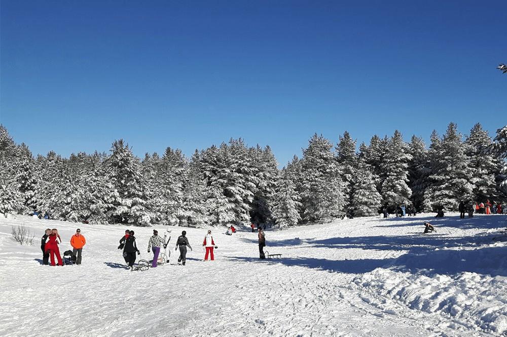 adria ski2-min