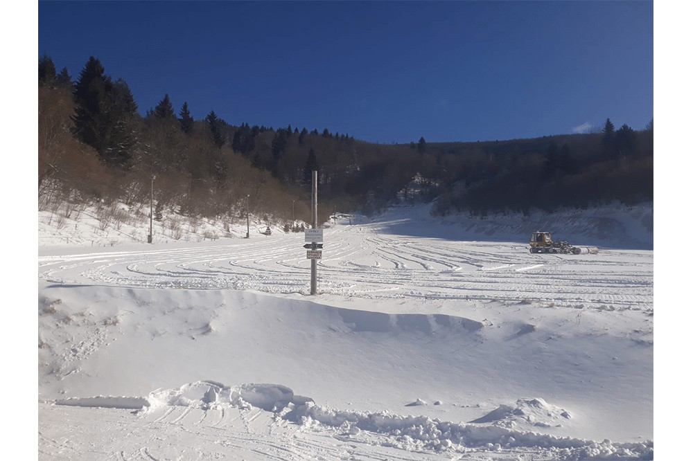 skiivan1-min