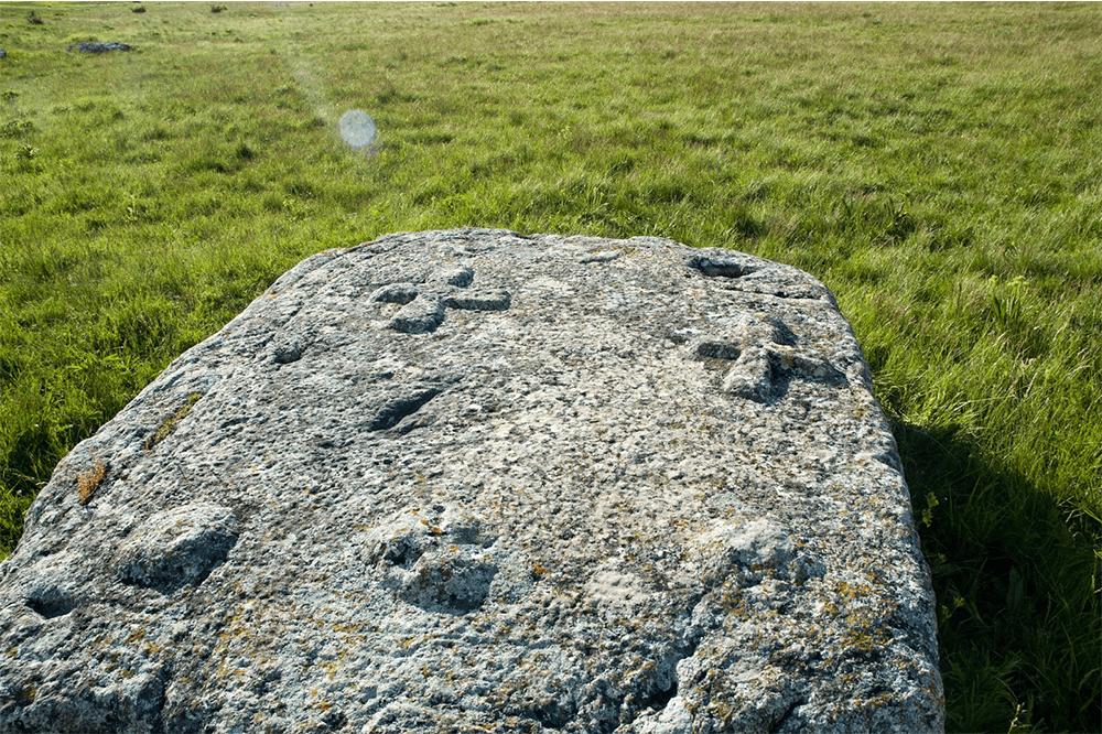 stecci1-min